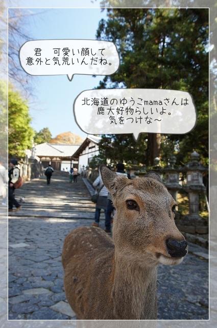 奈良後半02