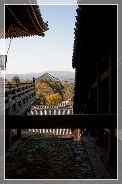 奈良後半12