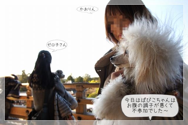 奈良後半09