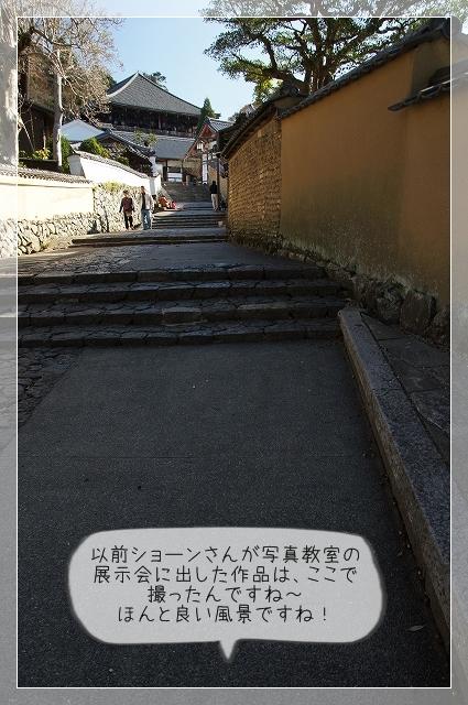 奈良後半17