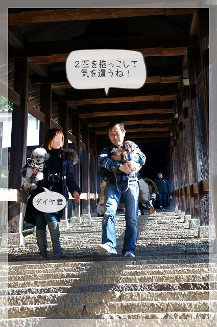 奈良後半14
