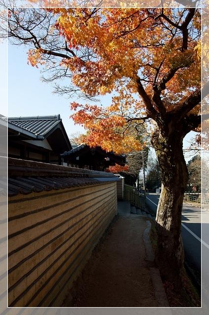 奈良後半20