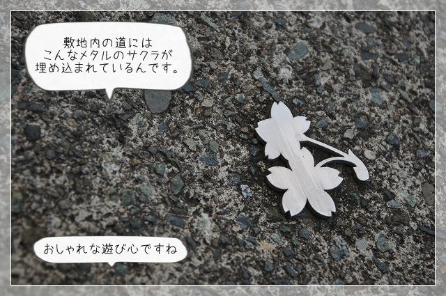 朝散歩04