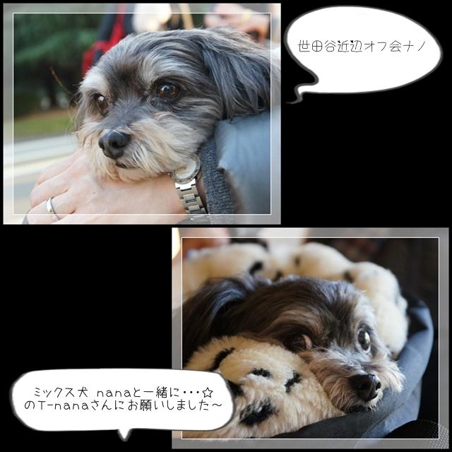 駒沢オフ会01