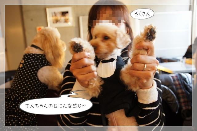 駒沢オフ会11