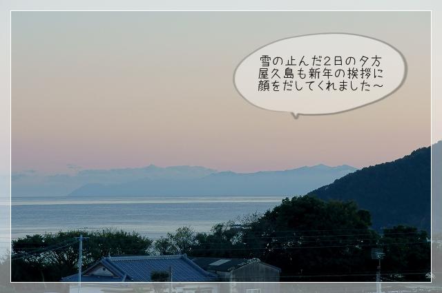 寒い新年01