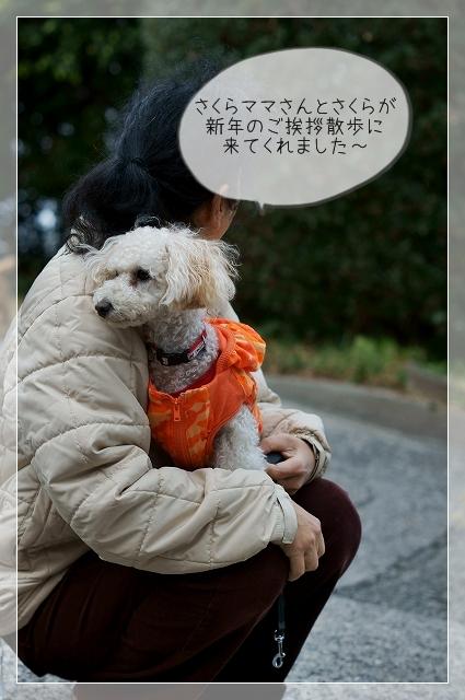寒い新年02