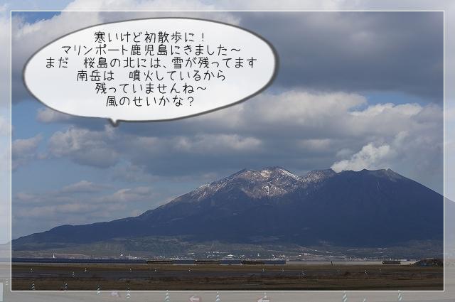 寒い新年07