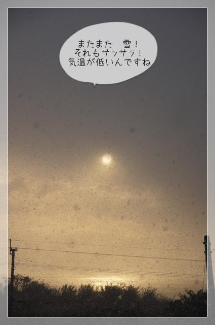 また雪01