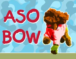 ASO BOW