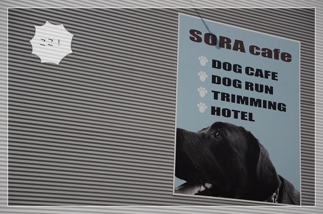 SORA02