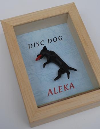 discdog2.jpg