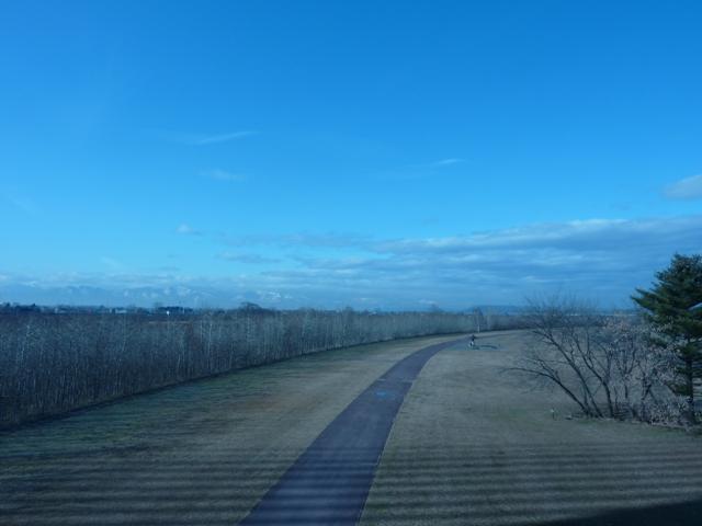 033橋の影