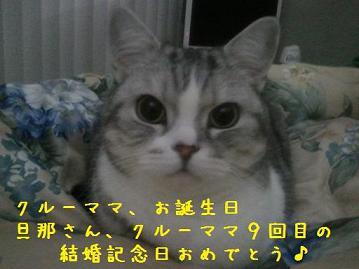 0505_20110505011955.jpg