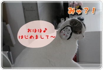 1-001_20120203013427.jpg
