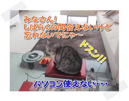 1005_20111005013833.jpg