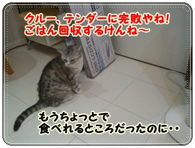 10_20110808210645.jpg
