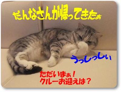 2-002_20110426231028.jpg