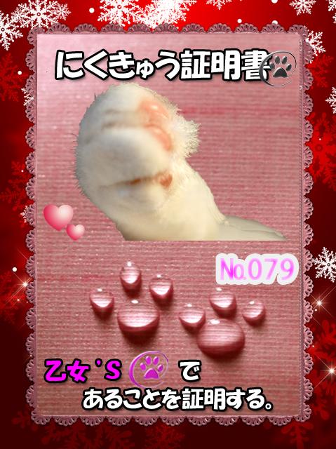 証明書(乙女ちゃん)