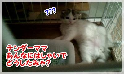 2011_08_14_22_44_46.jpg