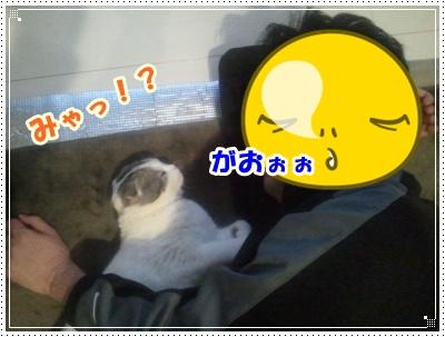 2012-03-19 01.47.37-007