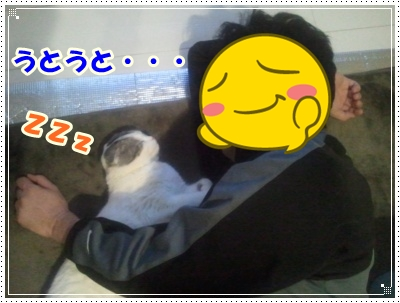 2012-03-19 01.47.27-006