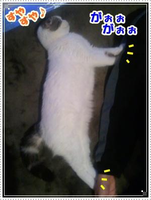 2012-03-19 01.49.44-010
