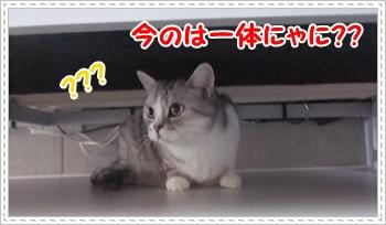 2_20110814004443.jpg