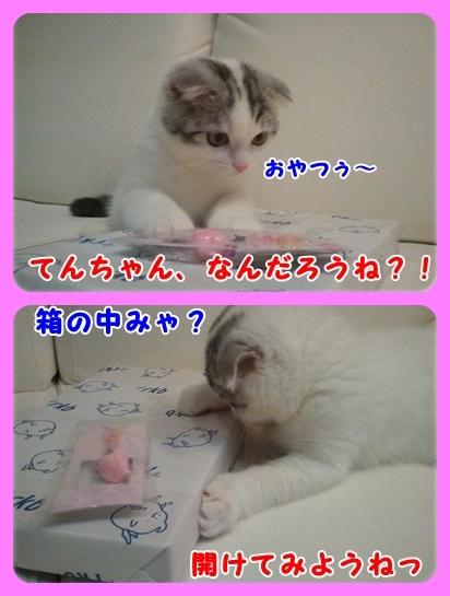 2_20110816001220.jpg