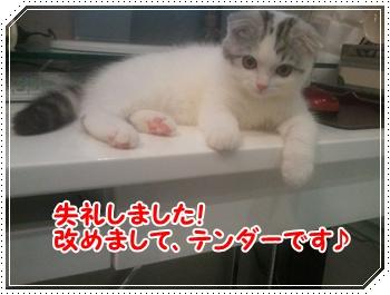 2_20110820122031.jpg