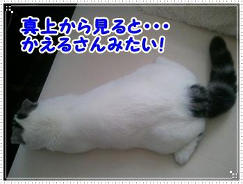2_20111116211313.jpg