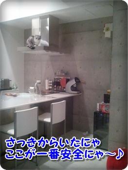 2_20111212224559.jpg