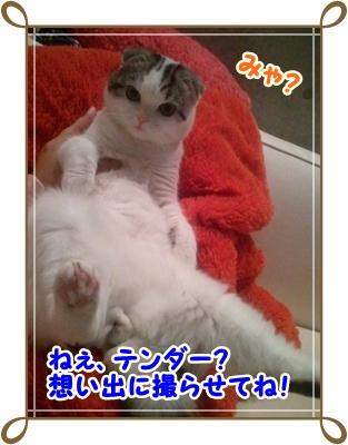 2_20111214015512.jpg