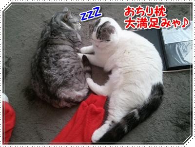 2_20120123002833.jpg