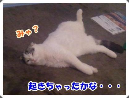 2_20120307225100.jpg