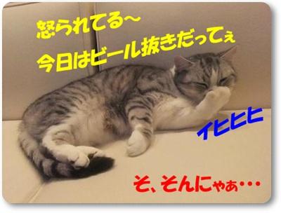 3-003_20110426231028.jpg