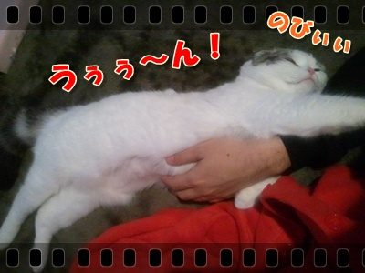 3-004_20120123201130.jpg