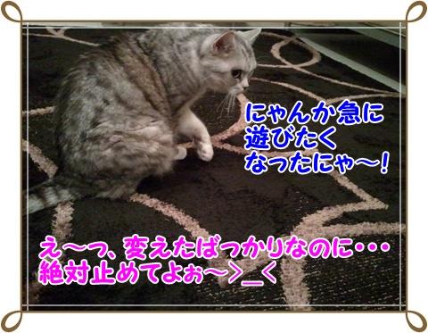 3_20110717232249.jpg