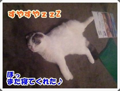 3_20120307225100.jpg