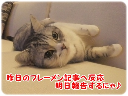 3_20120404033916.jpg