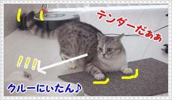4_20110814004443.jpg