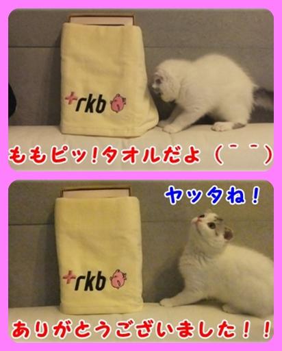 5_20110816001219.jpg