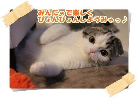 IMG_3621-001.jpg