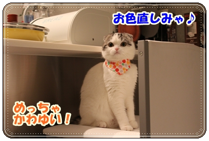 IMG_7030.jpg