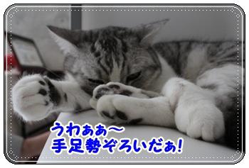 IMG_7053-005.jpg