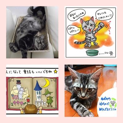 page_20110923114255.jpg