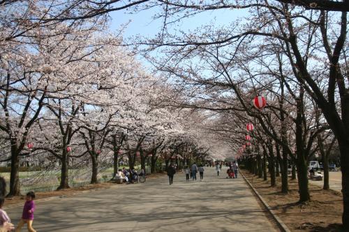 小瀬スポーツ公園4