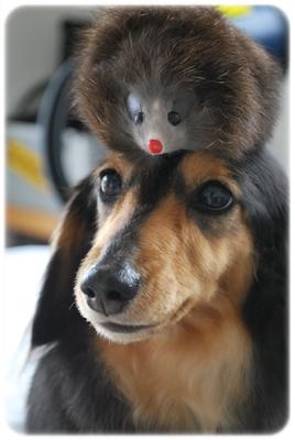 もなちゃんとネズミさん