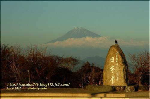 日本平と富士山