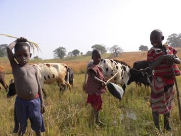 牛使いの子どもたち